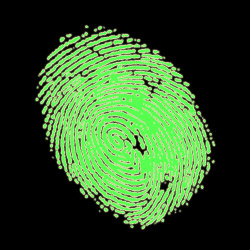 Internet Fingerprints