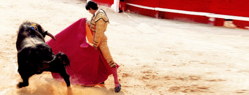 The bullfighter